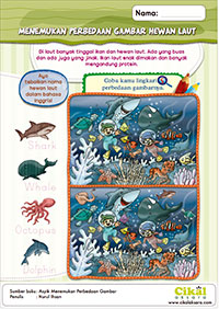 menemukan perbedaan hewan laut
