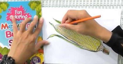 panduan mewarnai sayuran