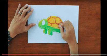 Cara cepat Menggambar dan Mewarnai Kura-kura